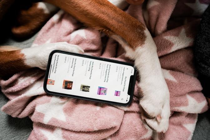 Bolt Foodi rakenduse abil saab nüüd PetCity poodidest lemmikloomatooteid tellida