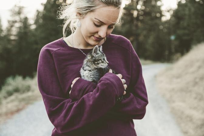 Kasside idiopaatiline põiepõletik ehk tsüstiit (FIC feline idiopathic cystitis)