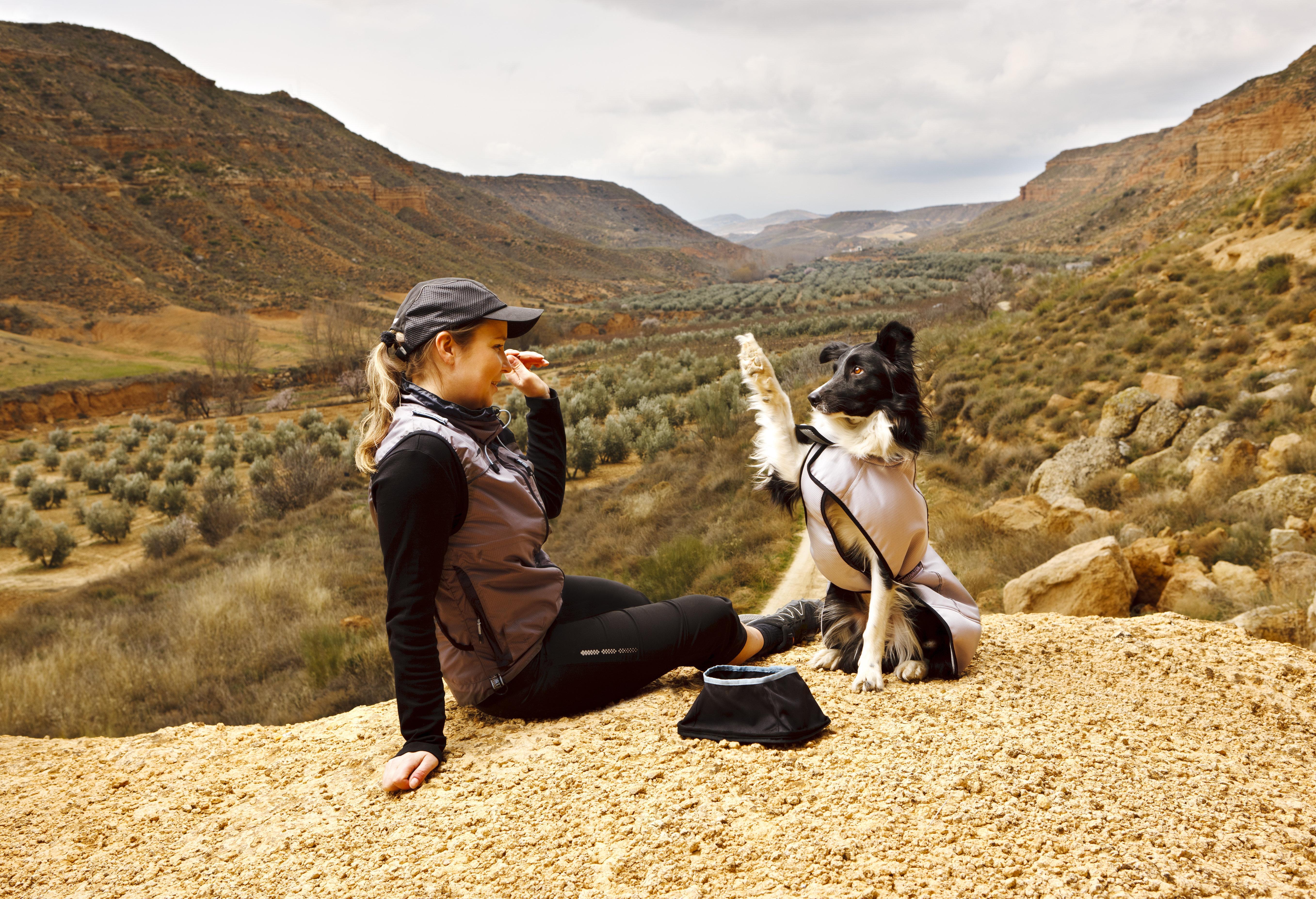 TEADUSLIKULT TÕESTATUD - koeraomanikud on tervemad!