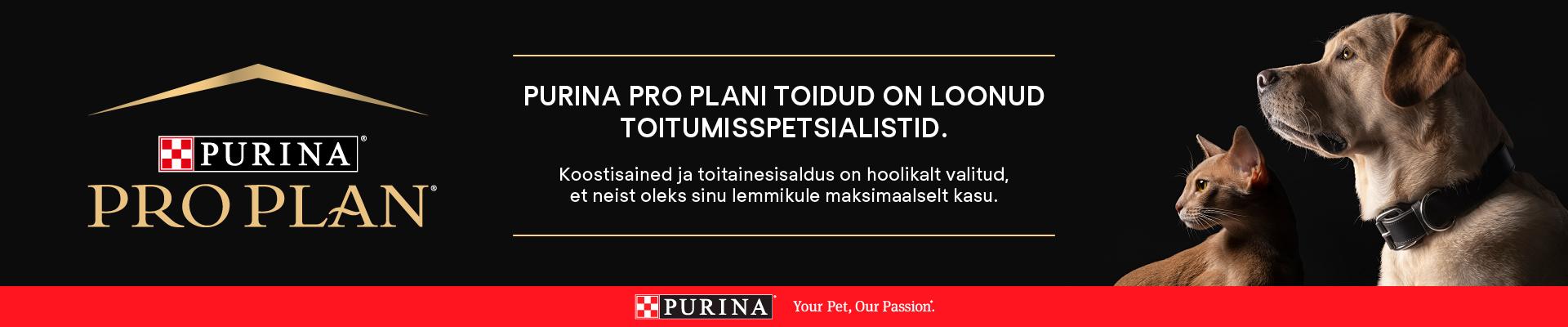 Pro Plan
