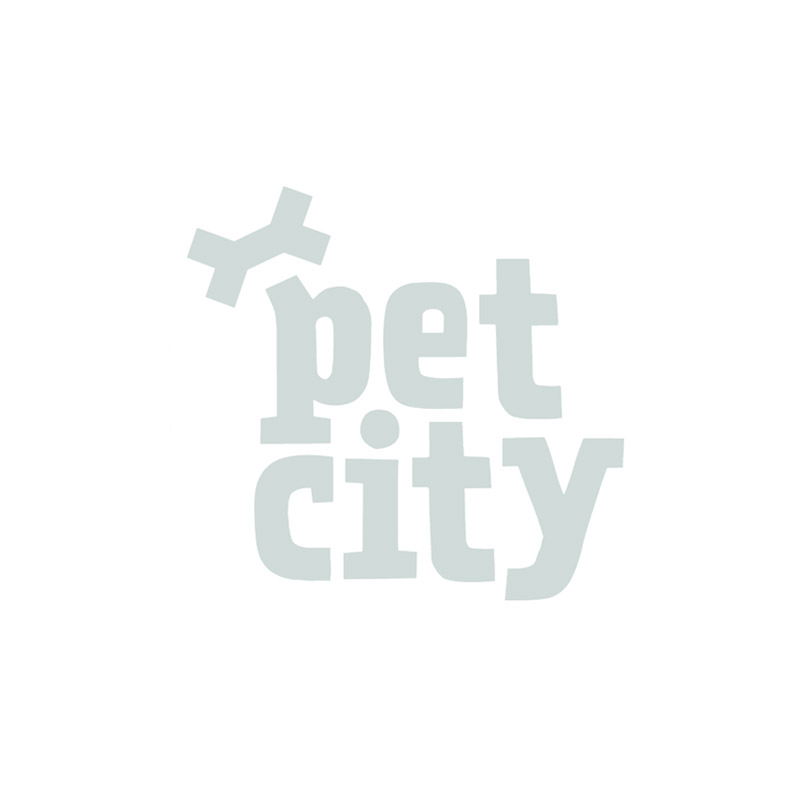 Flexi City lintrihm 2 m  kuni 35 kg koerale roosa