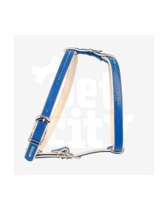Collar Brilliance traksid väikestele koertele 40 cm/45-54 cm, sinine